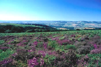 Exmoor self catering holiday cottages,Exford,self-catering cottage,accommodation,cottage holidays Exmoor, family holidays,country,weekend breaks,Somerset